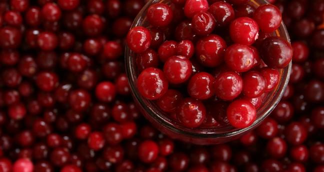 Cranberries kopen